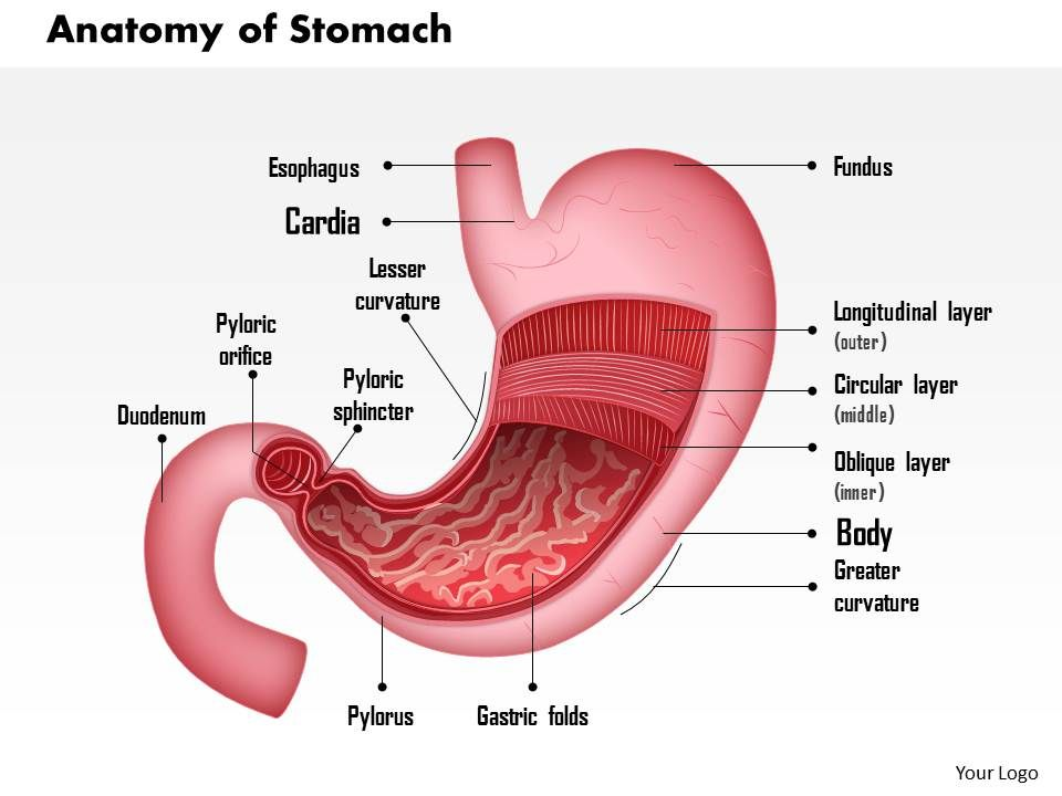 Best Cancer Stomach Surgery Hospital